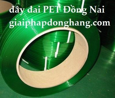 day-dai-pet-dong-nai