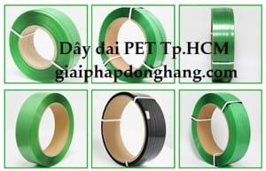 day-dai-pet-tphcm