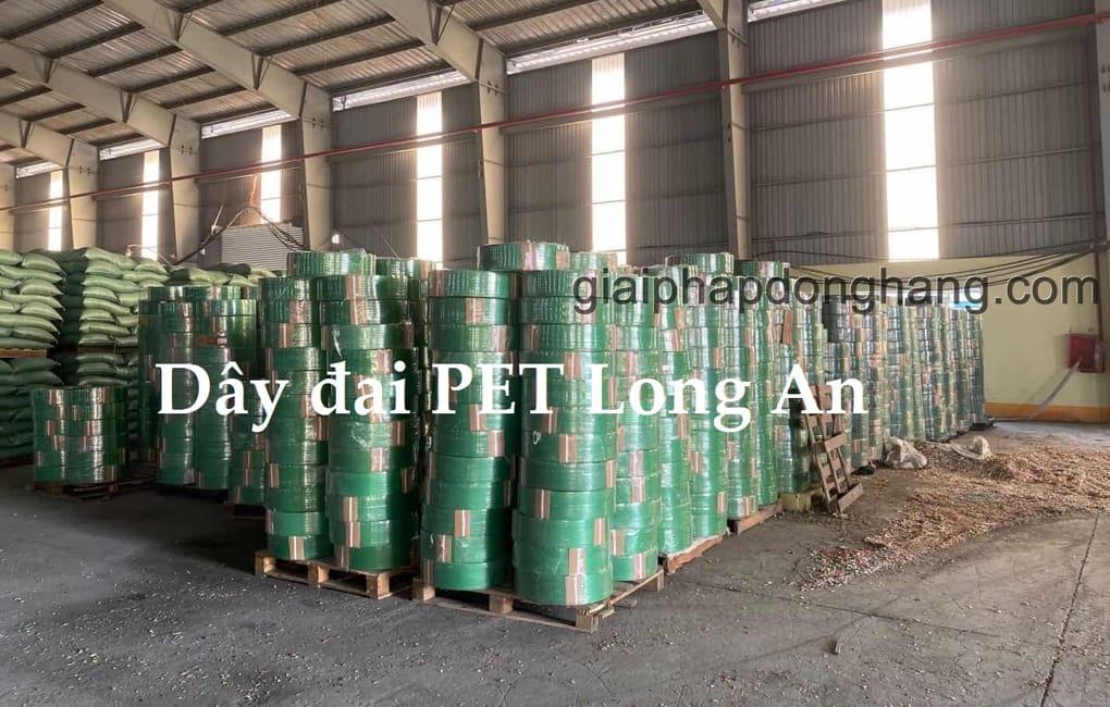 day-dai-pet-long-an